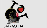 Туристичка организација