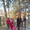 Организоване туристичке посете