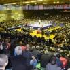 """У суботу, 10.марта од 17 часова кик бокс спектакл у спортској хали """"ЈАССА"""""""